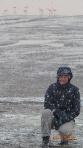 Lipez J2 - Laguna Colorado : mais est-ce bien des Flamingos...sous la neige! Ha! Quel pays!