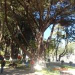Sucre - Parque Bolivar