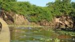 Pampas - 2 dauphins alentours de notre canot...bon faut le savoir!