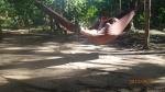 Jungle - voic ce qu'on fait pendant notre temps libre et on en profites pour écrire : blog et journal de voyage ( anecdote: Denis a perdu tout le texte de la Pampas et la Jungle...sniff et sniff!)