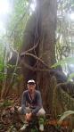 Jungle - spectaculaire non la grosseur...dans celui-ci on pouvait entendre l'écho de la forêt par sa forme.
