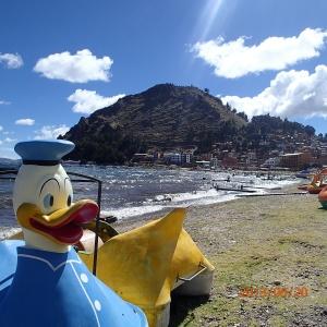 Copacabana - pas sur que ce canard s'en aille à l'eau...je me demande même si pendant la saison sèche il y va!...en arrière plan une partie de la ville.