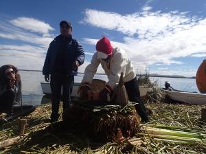 Uros - démonstration de la fabrication...ces îles sont bonnes pour 50 ans après il recommence!