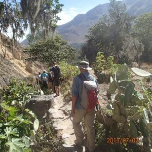 Arequipa - Tour au Cañon del Rio Colca: Maintenant nous sommes sur l'autre versant du Cañon là où il y a plus de végétation
