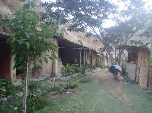 Arequipa - Tour au Cañon del Rio Colca: notre oasis, notre lodge est une des dernière petite cabane tout au fond