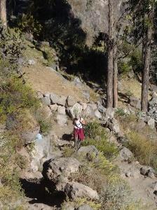 Arequipa - Tour au Cañon del Rio Colca: et voici Dana (bravo!) une des filles de notre groupe qui était aux prises de vertige et déséquilibre ...elle a réussit à montée à son rythme et sans prendre de mules