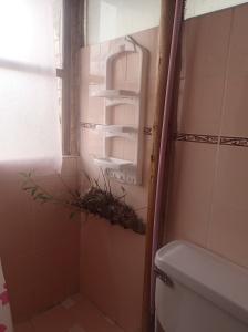 Cusco - B&B...on a même une vrai tige de l'arbre dans la salle de bain qui pousse tout au bas! Ils ont bâti à même l'arbre!