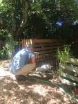 Dans le jardin avec Saturnin
